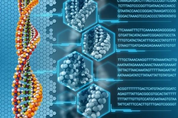 Course__courses_bioinformaticsforbeginners__course-promo-image-1478933588.4