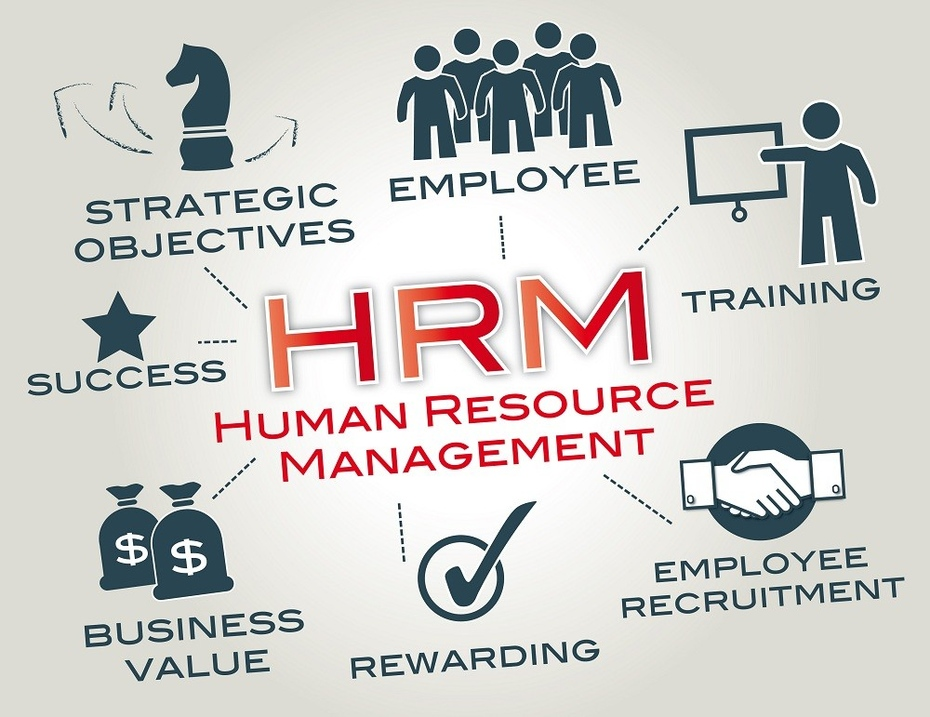 human sevices management