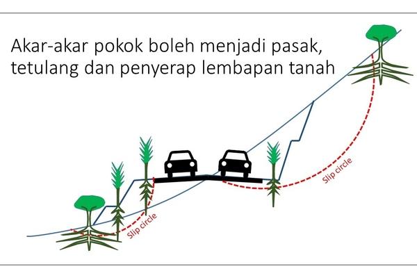 Ukm mooc openlearning pokok pokok berkhasiat mengukuhkan jalan raya ccuart Choice Image